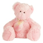 Medium Pink Teddy ( 22cm )